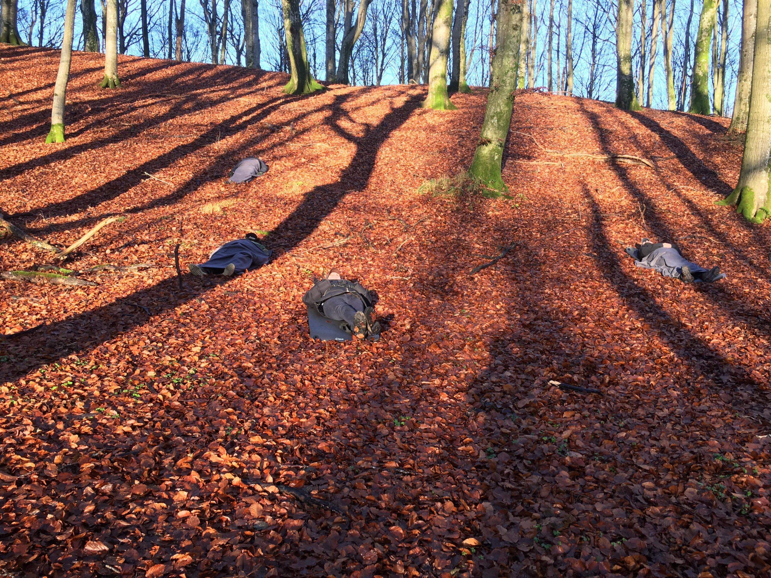Naturterapi i Vendsyssel - Vildmandskursus, Rodfæste og En god start